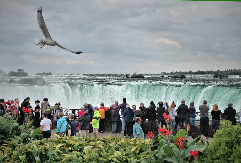 Investing in the Future of Ontario's Tourism Industry